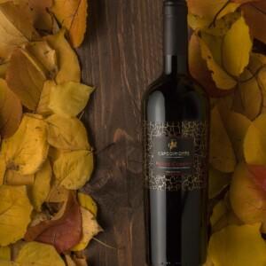 Fotografia di bottiglie di Vino